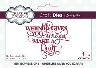 Mini Expressions - When Life Gives You Scraps